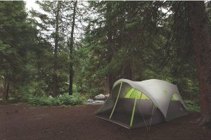 Coleman Steel Creek 6 Person Fast Pitch Dome In The Forest